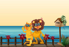 A lion and a tiger at the bridge Royalty Free Stock Images