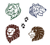 Lion and tiger heads Stock Image