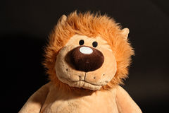 Lion toy portrait. Portrait of a lion puppy toy Stock Image