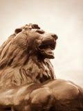 Lion in Trafalgar Square - London - UK. Statue of lion symbol of Trafalgar Square in London - UK Stock Photography