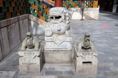Lion and turtle statues in Yonghe Temple in Beijing. Lion and turtle statues in Yonghe Temple also known as Yonghe Lamasery or simply Lama Temple in Beijing royalty free stock photos