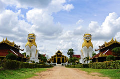 Lion två på det Surasri lägret, Kanchanaburi, Thailand royaltyfria bilder