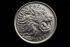 Lion on the twenty five cent Royalty Free Stock Images