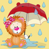 Lion with umbrella Royalty Free Stock Photography