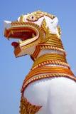 Lion, un Birman Image libre de droits