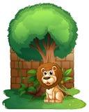 A lion under a big old tree. Illustration of a lion under a big old tree on a white background vector illustration