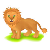 Lion. Vector Stock Images