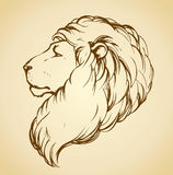 Lion. Vector drawing Royalty Free Stock Photos