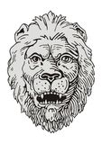 Lion Vector Royalty Free Stock Photo