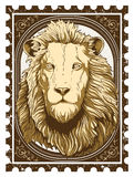 Vintage lion vector illustration