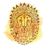 Lion in war bonnet, hand drawn animal illustration Stock Images