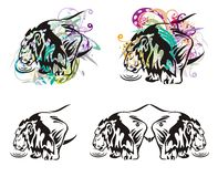 Lion and water splashes. Grunge tribal lion symbol at water with floral splashes and colorful drops. Four options on a white background Royalty Free Stock Image