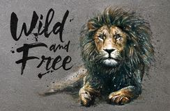 Lion watercolor painting with background predator animals King of animals wild & free vector illustration
