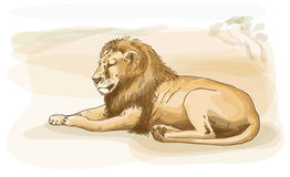 Lion. Watercolor style. Royalty Free Stock Photo