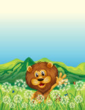 A lion waving his hand near the weeds Royalty Free Stock Photos