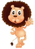 A lion waving his left hand Stock Image