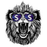Lion wearing glasses with dollar sign. T-shirt print with wild animal wearing glasses with dollar sign stock photo
