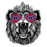 Lion wearing glasses with National flag of the Confederate States of America Usa flag glasses Wild animal for t-shirt. Wild animal for patch or tattoo or logo or royalty free stock images