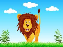 Lion in the wild. Illustration of lion in the wild Royalty Free Stock Image