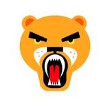 Lion wild illustration animal safari mammal design cat fe. Lion vector wild illustration animal safari mammal design cat feline Royalty Free Stock Image