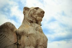 Lion with wings and clouds Stock Image