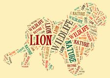 Lion of words Stock Photos