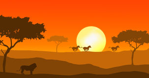 Lion and zebra in sunset stock illustration