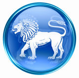 Lion zodiac button icon Stock Images