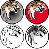Lione head in 4 interpretation. Here is a 4 tiger head in different interpretation Royalty Free Stock Photography