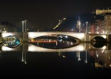 Lione si è rispecchiata nell'acqua durante la notte Fotografie Stock Libere da Diritti