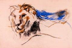 Lionen skissar Royaltyfri Fotografi