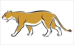 Free Lioness Stock Photos - 30734573