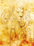 Lioness with flower, pencil drawing on paper. Color effect and Computer collage. Royalty Free Stock Photo