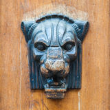 Lioness or panther head as Door decoration. stock photo