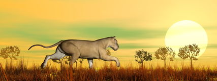 Lioness running in the savannah - 3D render Royalty Free Stock Photos