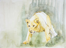 Lioness sneaking towards a prey. The dabbing technique near the edges gives a soft focus effect due to the altered surface roughness of the paper Stock Photos