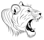 Lioness, tattoo Royalty Free Stock Images