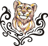 Lioness tattoo Stock Image