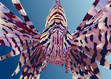 Lionfish on a blue background Stock Photography