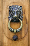 Lionhead door knocker Stock Photography