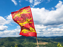 Lionheart flag Stock Photos