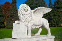 lionmarco san Royaltyfri Foto