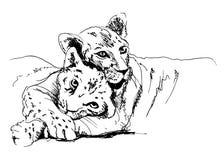 Lionne avec l'petit animal Image libre de droits