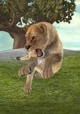 Lionne de chasse Images libres de droits