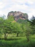 lionrocksigiriya Arkivbilder
