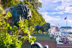 Lions at the Admiralty embankment, St Petersburg Royalty Free Stock Images