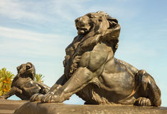Lions in Barcelona. Royalty Free Stock Images
