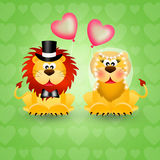 Lions couple Royalty Free Stock Image