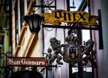 Lions d'Onix Photos libres de droits