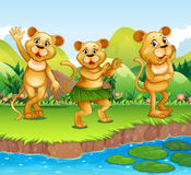 Lions dancing by the river Royalty Free Stock Photo